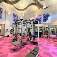 Addison at Universal Gym