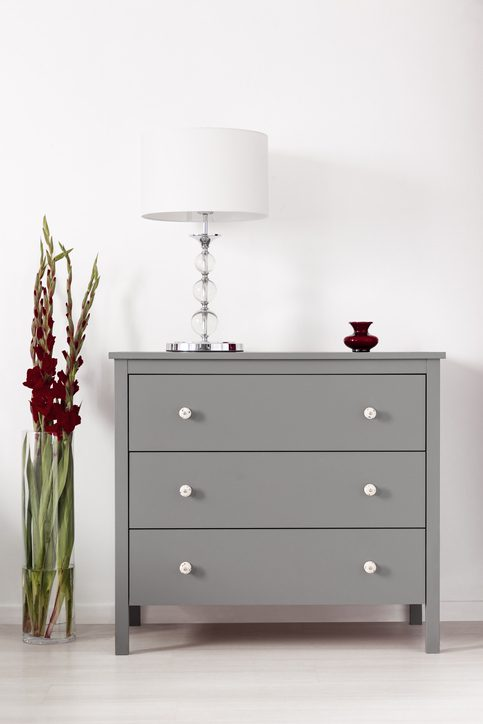 Three drawer gray cabinet with a lamp on and a vase of burgundy gladiolas by in a glamour furniture showroom interior. Real photo.